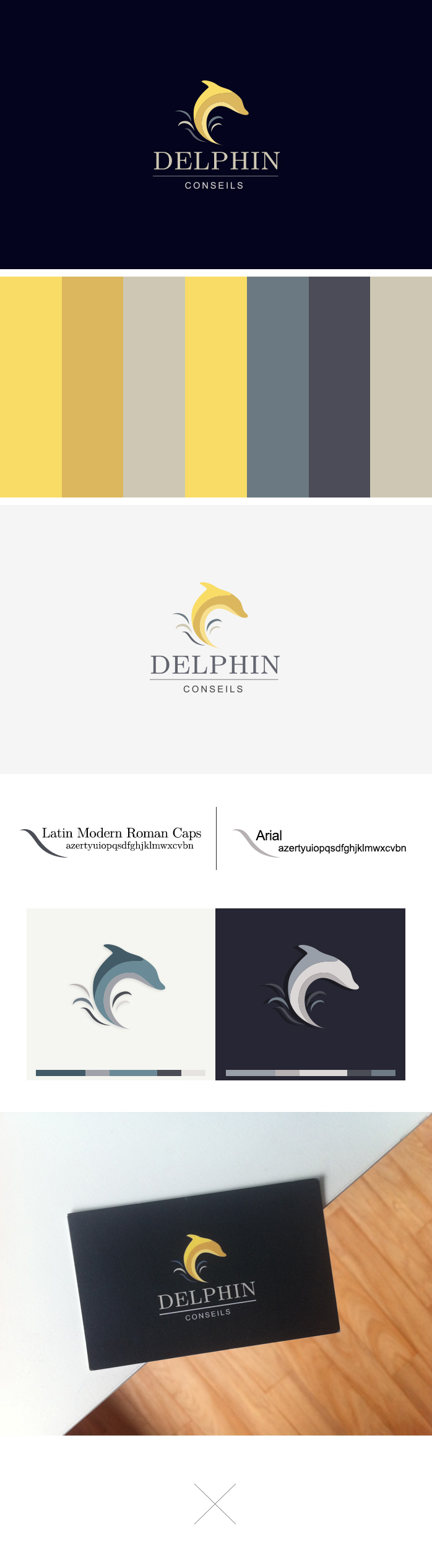 logo Delphin Conseils hotellerie